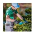Προστασία του Κηπουρού